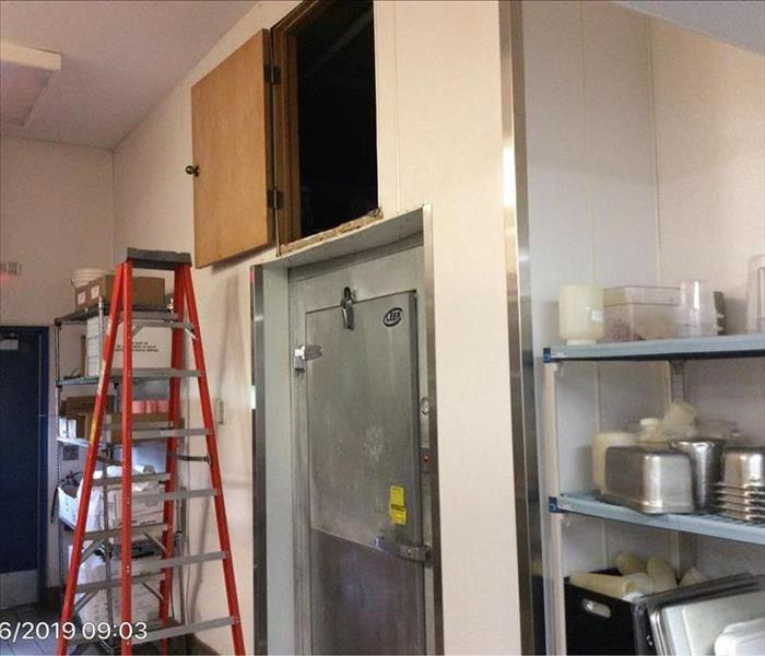 wall and freezer door that has mold