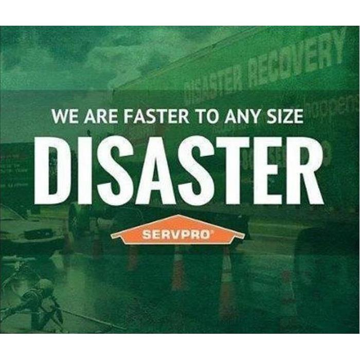 green background with the words We are Faster to Any Size Disaster