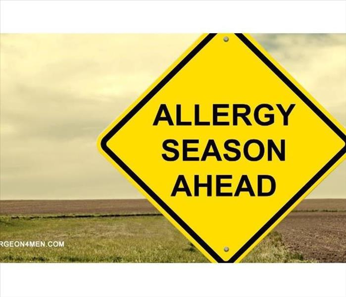 Cleaning Allergy Season, Cleaning Tips to help!