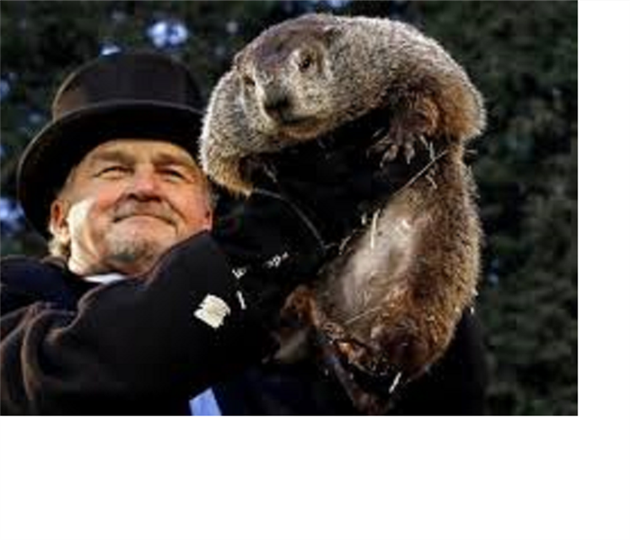 Community February 2nd is Ground Hog Day