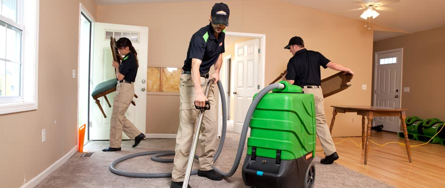 Mundelein, IL cleaning services