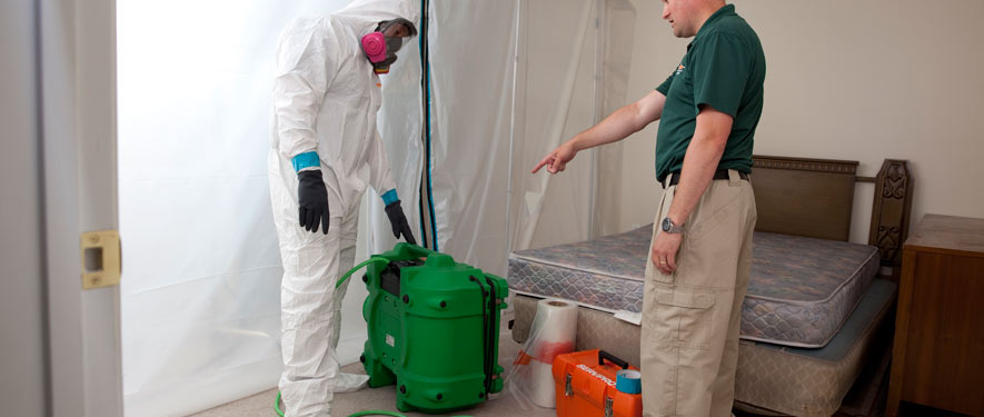 Mundelein, IL mold removal process